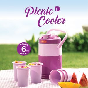 picnic-cooler-set