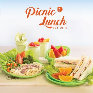 picnic-lunch-set